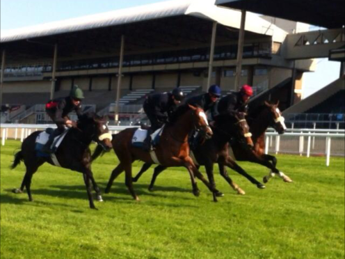 2 yos Working At The Curragh