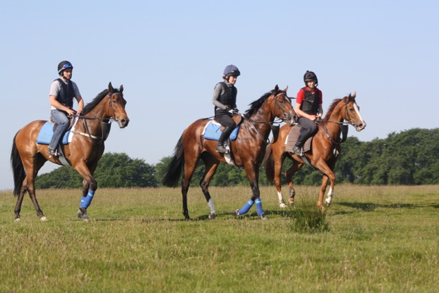 On The Way Back From The Curragh Gallops