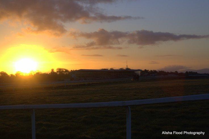 Sunrise On The Curragh