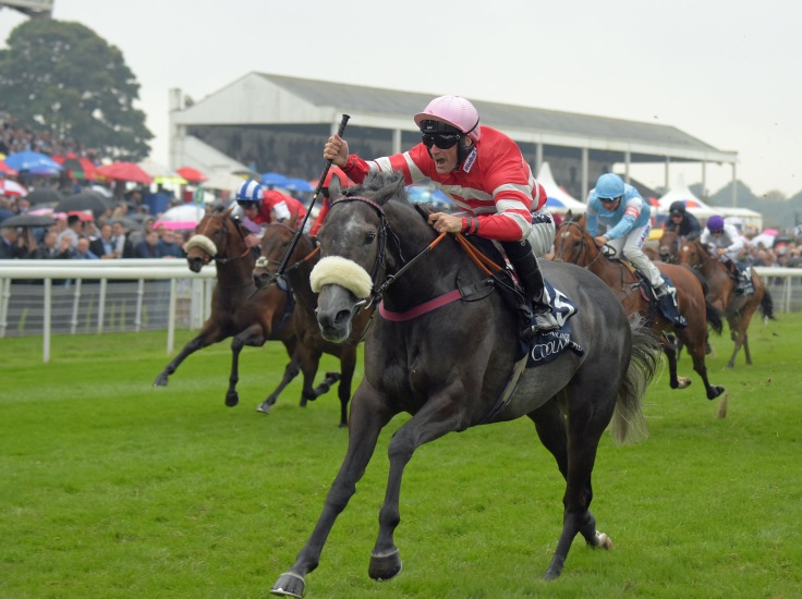 MECCA'S ANGEL with P Mulrennan wins  in Nunthorpe stakes at York 19-8-16.