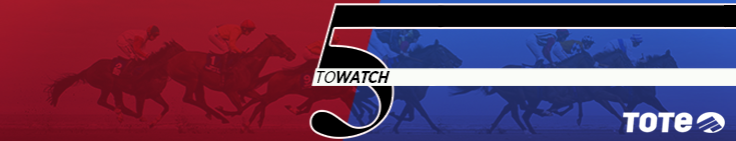 5-horses-to-watch