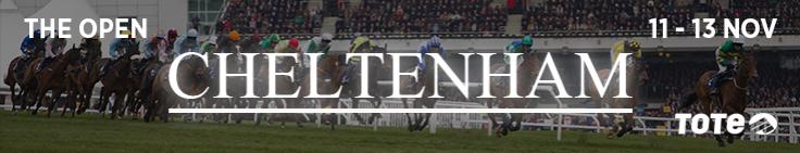 banner-cheltenham-open