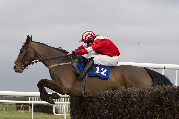 dinnies-vinnie-at-thurles
