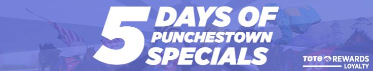 5 Days Of Punchestown Specials Banner