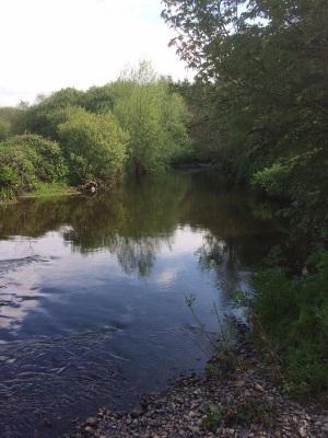 calluna river